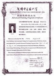 נטע דן רפואה סינית לוגו