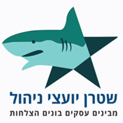 שטרן יועצי ניהול לוגו