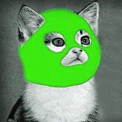 החתול הירוק