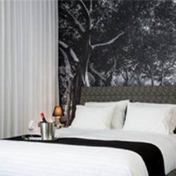 מלון דיזינגוף אווניו סטייל לוגו