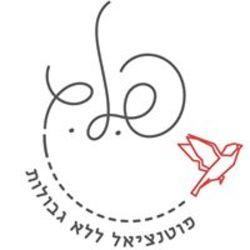 פ.ל.ג ייעוץ לוגו