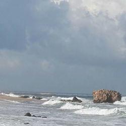 """חוף י""""א לוגו"""