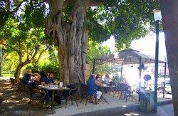 קפה בגן לוגו