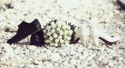 פרחים בגן