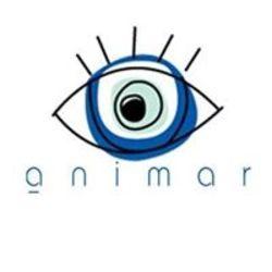 אנימאר לוגו