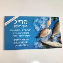 עולם הדגים לוגו