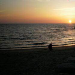 חוף הריביירה לוגו