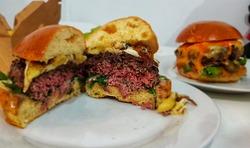 תמונות צ'אפובורגר