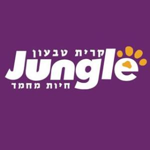 ג'ונגל לוגו