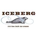 אייסברג דף הרשת לוגו