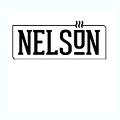 נלסון 33 לוגו