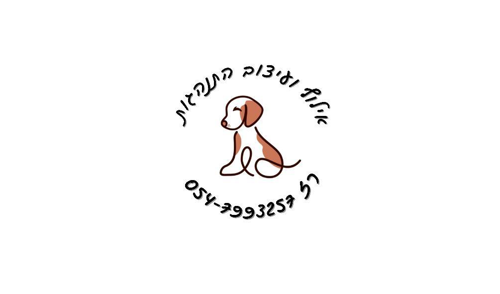 רז אילן לוגו