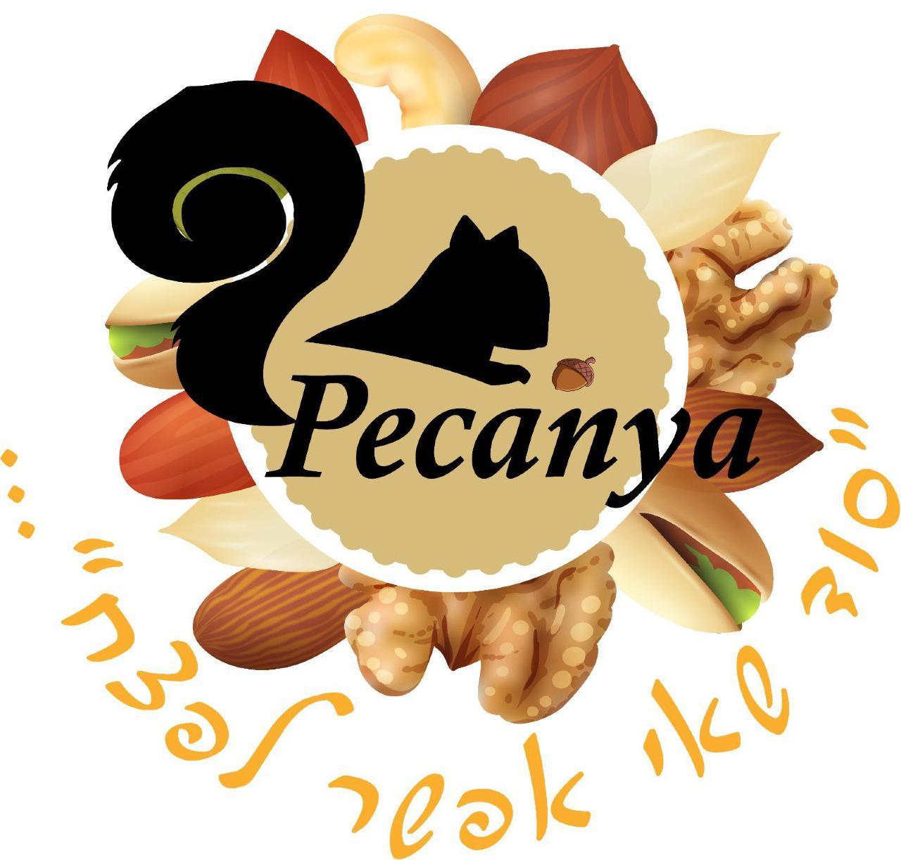 פקאניה לוגו