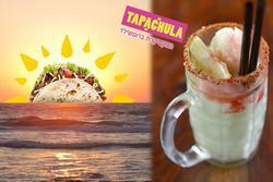 תמונות טאפאצ'ולה