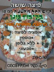 פיצה שושה לוגו