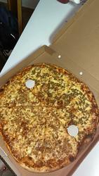 פיצה פנורמה לוגו