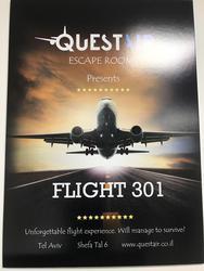 טיסה 301 לוגו