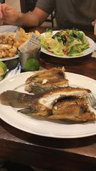 תמונות מסעדת הדגים