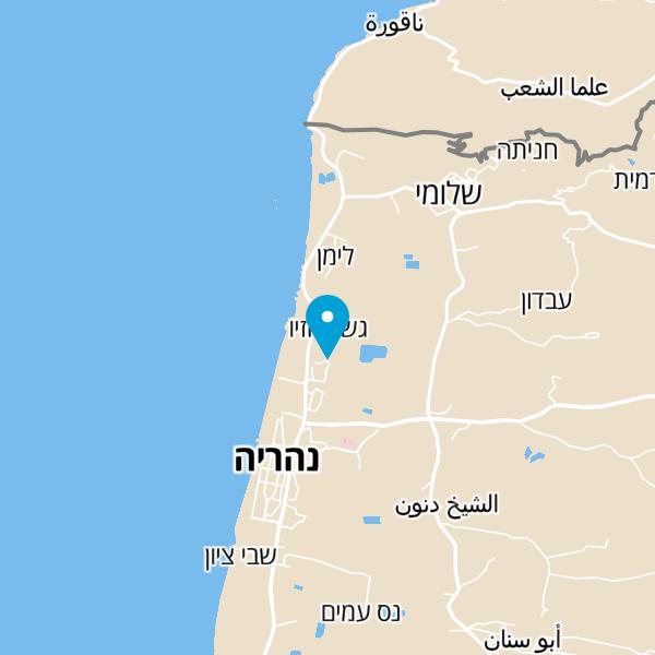 מפה של מיכל דוד גולדשטין