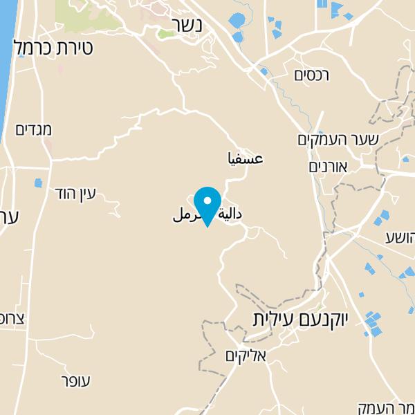 מפה של שטיחי עיר הכרמל