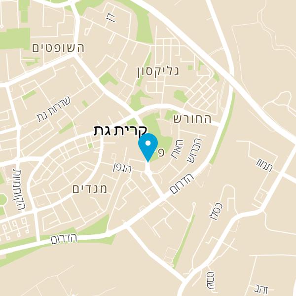 מפה של יגאל רביד
