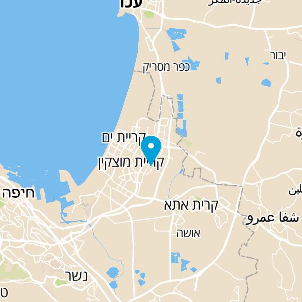 מפה של תמנון