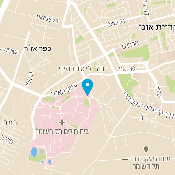 מפה של פרופ' תלמי יואב