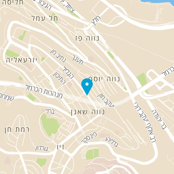 מפה של כהן מרגלית