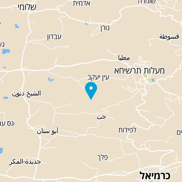 מפה של shlomit cosmetics