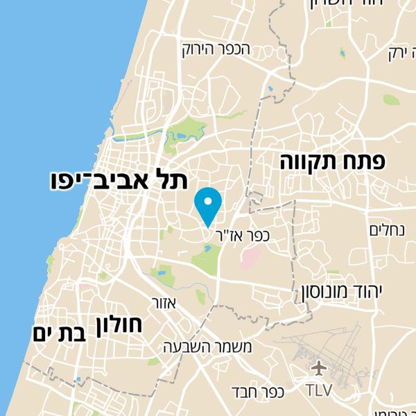 מפה של י. לביא
